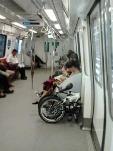 Dahon in MRT