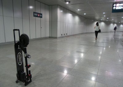 Electric Scooter G329