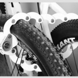 lock bikes